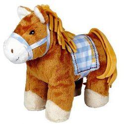 Kucyk Sam Koń mój przyjaciel Pony
