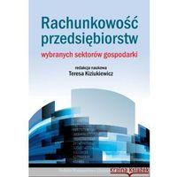 Rachunkowość przedsiębiorstw wybranych sektorów gospodarki. (9788320820980)