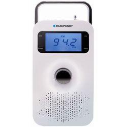 PP10 marki Blaupunkt, radioodbiornik