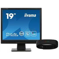 LCD Iiyama P1905S