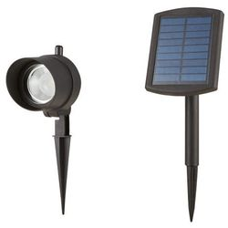 Lampa Blooma Bridger 40 lm 5000 K czarna