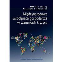 Międzynarodowa współpraca gospodarcza w warunkach kryzysu