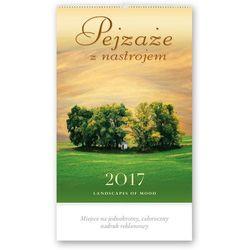 Kalendarz ścienny 2017, Pejzaże z nastrojem, kup u jednego z partnerów