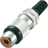Conrad components Złącze cinch  719356 złącze żeńskie proste ilość pin: 2 czerwony 1 szt. (20500015561
