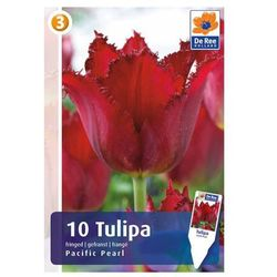 Tulipany, CJM758