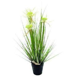 Miloo :: trawa pionowa sunny flower 80cm - 80cm ||wymiary: 80cm, donica 13cm