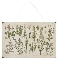 Ib Laursen - Obraz Botaniczny