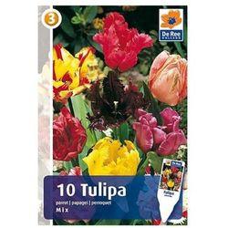 Tulipan mieszanka (8711148313977)
