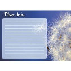 Wally - piękno dekoracji Tablica magnetyczna suchościeralna plan dnia dmuchawiec 355