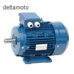 Silnik elektryczny, 4KW 2800RPM - sprawdź w wybranym sklepie