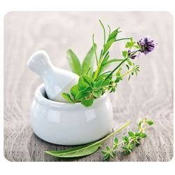 Wenko Szklana płyta ochronna herb garden na kuchenkę – duża,  (4008838137901)