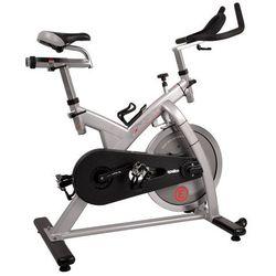 Epsilon Professional rower producenta inSPORTline