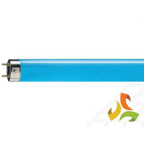 Świetlówka liniowa 36W/18 TL-D Niebieska G13,PHILIPS - produkt z kategorii- świetlówki