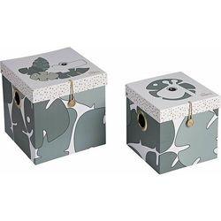 Pudełko z pokrywką tiny tropics 2 szt. duże, 5095963