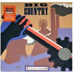 Steeltown 2LP - produkt z kategorii- Rock