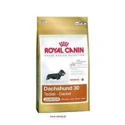 ROYAL CANIN Dachshund Junior 1,5kg (karma dla psa)