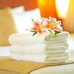 Ręcznik Forum Frotte Gruby Puszysty Hotelowy 50x100cm