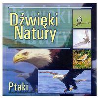 Dźwięki natury - Ptaki - Agencja Artystyczna MTJ (5906409100813)