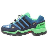 adidas Performance TERREX GTX Półbuty trekkingowe core blue/core black/energy green