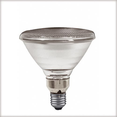 PAR38 lampa , przezroczysta E27, 122mm, 80W, Paulmann z Kuis.pl