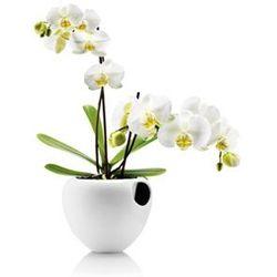 Samopodlewająca doniczka orchid od producenta Eva solo