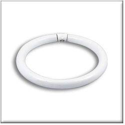 Świetlówka kołowa, ciepła barwa, G10q, 305mm, 32W (świetlówka)