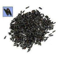 Olej z czarnego kminku BIO 250ml - produkt z kategorii- Oleje, oliwy i octy