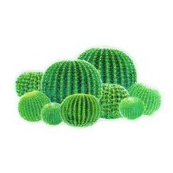 Abyss & habidecor cactus dywanik