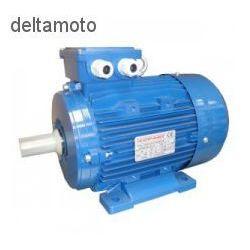 Valkenpower Silnik elektryczny, 3kw 1400