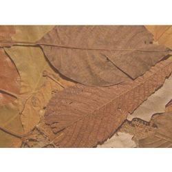 Wally - piękno dekoracji Tablica suchościeralna 160 liście