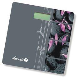 Łucznik BS-2009 (waga elektroniczna)
