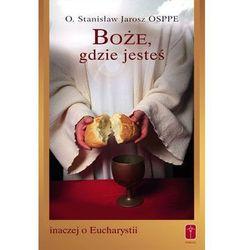 Boże, gdzie jesteś. Inaczej o Eucharystii (kategoria: Książki religijne)