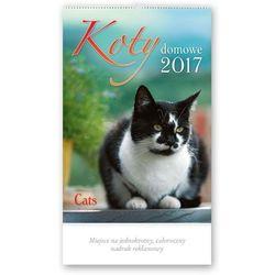 Kalendarz ścienny 2017, Koty domowe, kup u jednego z partnerów