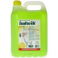 5kg cytrynowy płyn do mycia naczyń marki Ludwik