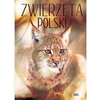 ZWIERZĘTA POLSKI - Wysyłka od 3,99 - porównuj ceny z wysyłką, FENIX