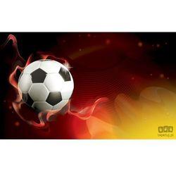 Fototapeta Piłka Nożna 3384