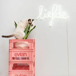 Lampa ścienna Neon biała miłość, towar z kategorii: Lampy ścienne