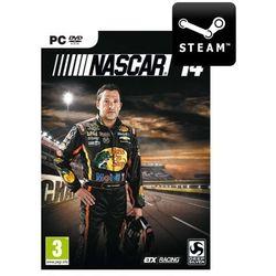 NASCAR 14 - Klucz