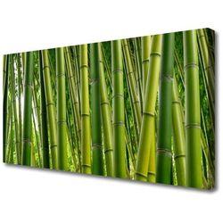 Obraz Canvas Bambusowy Las Pędy Bambusa