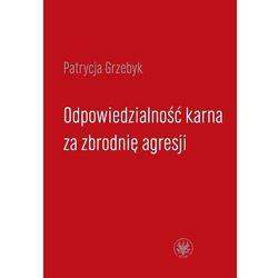 Odpowiedzialność karna za zbrodnię agresji - DODATKOWO 10% RABATU i WYSYŁKA 24H! (kategoria: Książki mil