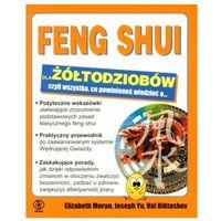Feng Shui dla żółtodziobów (2008)