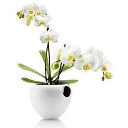 Samopodlewająca doniczka orchid biała marki Eva solo