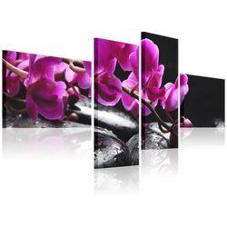 Artgeist Obraz - różowa orchidea i kamienie zen