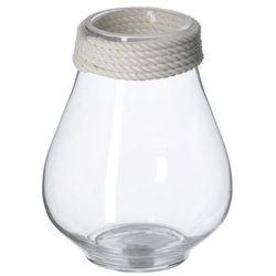 Dekoria wazon szklany zynnia 20cm, 20 cm