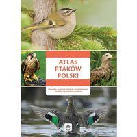 Atlas ptaków Polski - Wszystko, co młody miłośnik ornitologii chce wiedzieć o gatunkach ptaków - Opracow