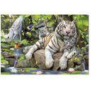 1000 el. tygrysy bengalskie wyprodukowany przez Educa