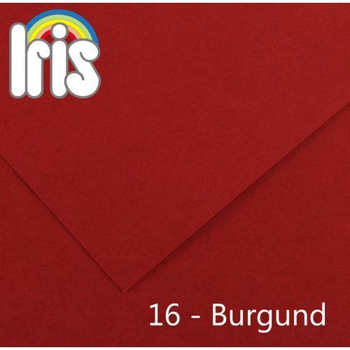 Brystol  Iris B1/240g burgundowy 25ark., marki Canson do zakupu w MaxiBiuro
