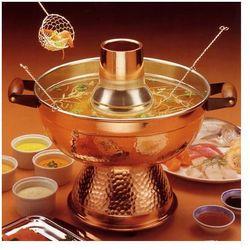 Garnek elektryczny do fondue chińskiego (rosół/bulion) / hotpot firmy ttm marki Ttm sa (switzerland)