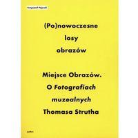 Ponowoczesne losy obrazów - Krzysztof Pijarski (9788387870560)