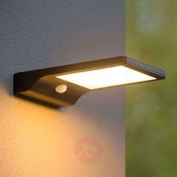 Solarna lampa zewnętrzna LED Basic z czujnikiem (5411212221155)